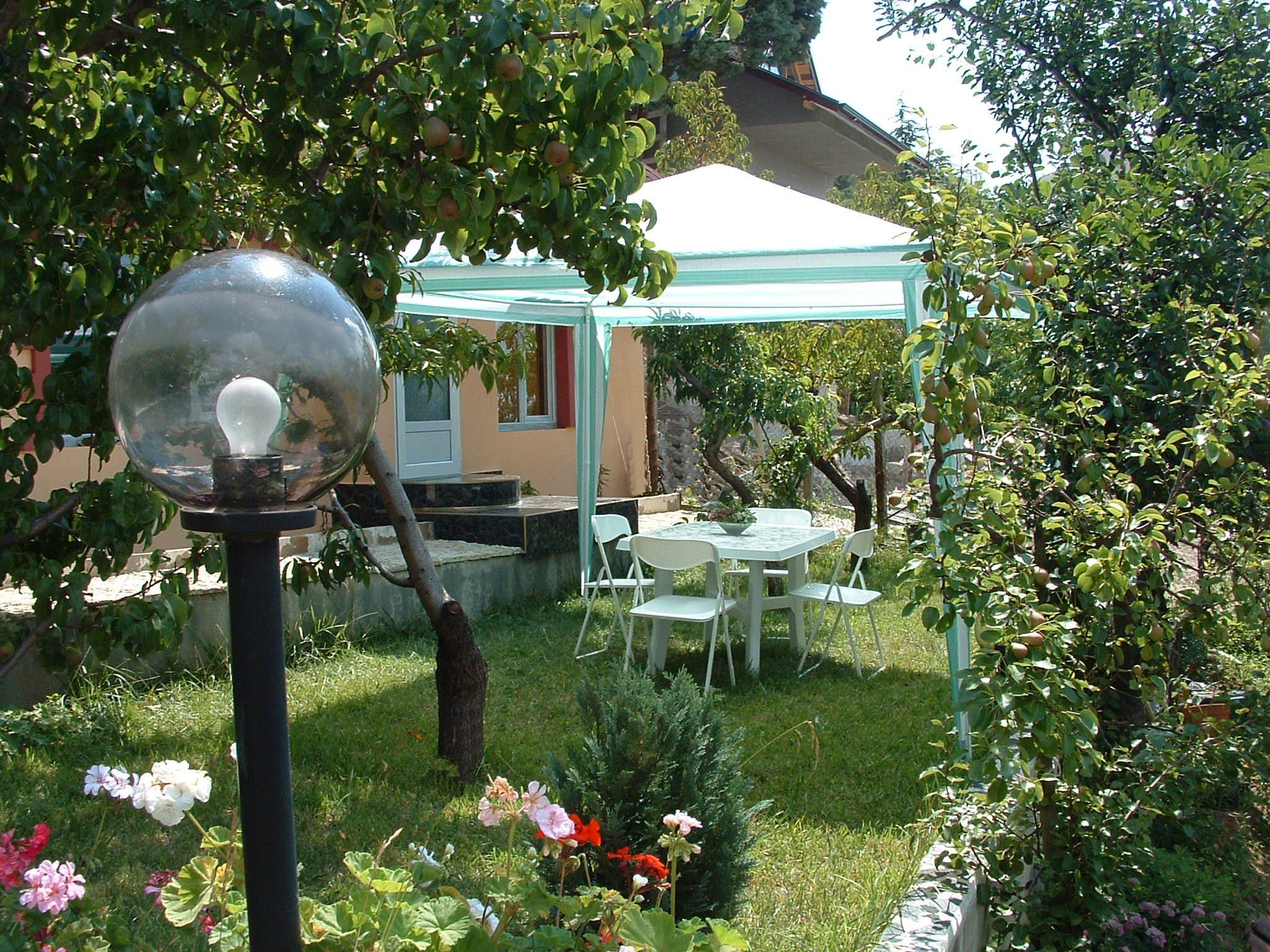 9.room12 garden with tent
